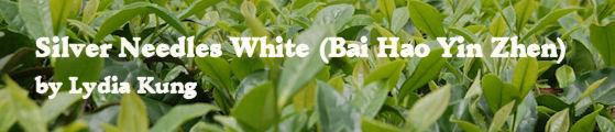 Silver Needles White Tea (Bai Hao Yin Zhen) by Lydia Kung