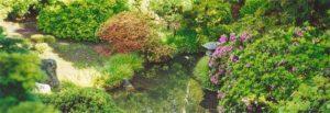 View of pond in Sunken Garden