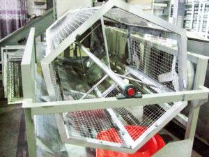 Machine for sorting fresh tea leaves