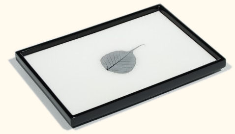 White Lacquer Tray with Bodhi Leaf