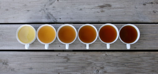 Six tea cups of different tea situated in a line on a wooden decking