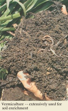 Vermiculture -- extensively used for soil enrichment