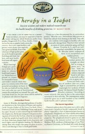 'Therapy in a Teapot' by Maggy Howe.