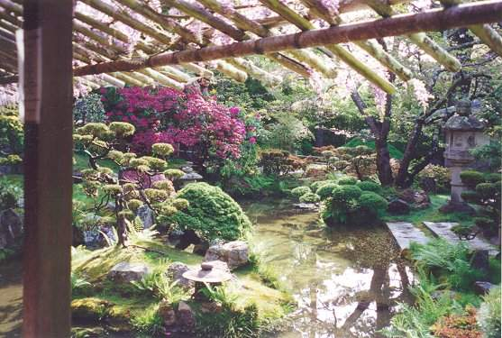 View from Tea House with pond and stone lanterns
