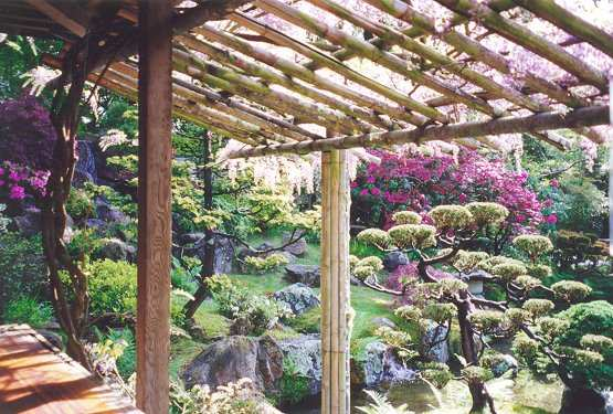 View from Tea House with dwarf trees and rhododendron