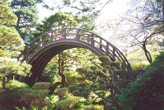 Drum Bridge of Japanese Tea Garden